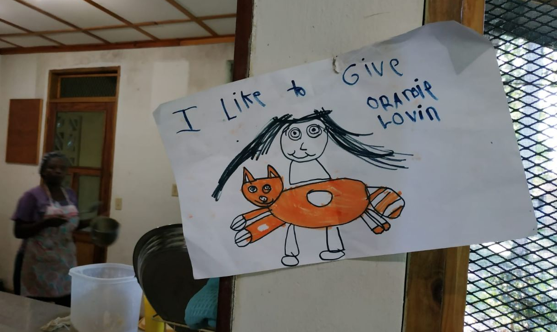 like_to_give_lovin_orpahage_hbs_limbe