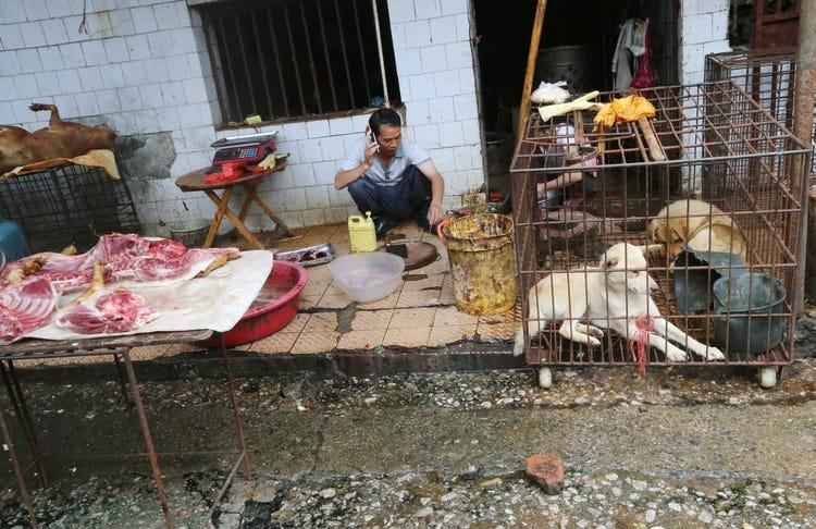 Wuhan wet market -Source : Weibo